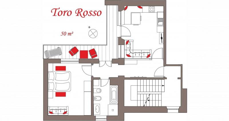 Toro Rosso_gedreht3